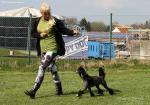 Impressionen12. Doghandling Seminar