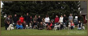 Dog Handling Seminar: Group photo - We cordially invite