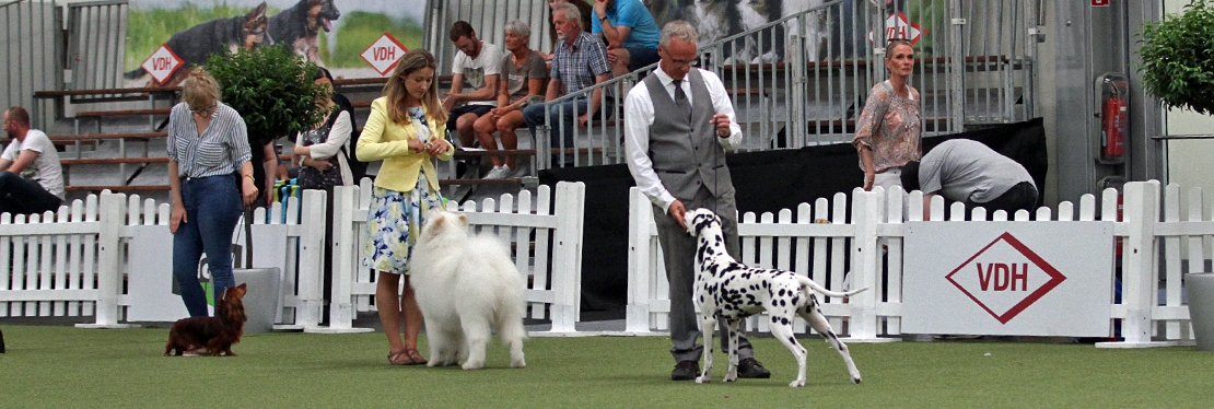 Dog Handling Presentations 2020