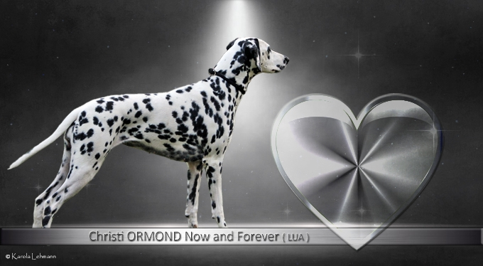 Christi ORMOND Now and Forever