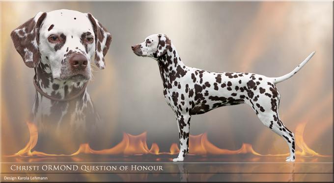 Christi ORMOND Question of Honour