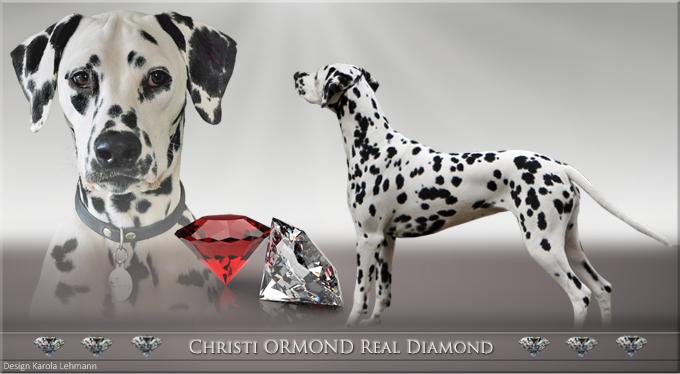 Christi ORMOND Real Diamond