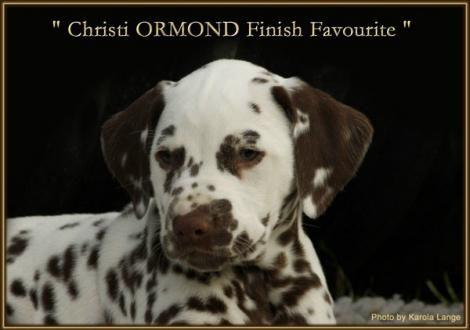 Christi ORMOND Finish Favourite