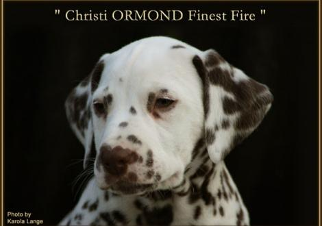 Christi ORMOND Finest Fire