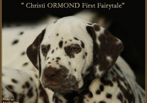 Christi ORMOND First Fairytale