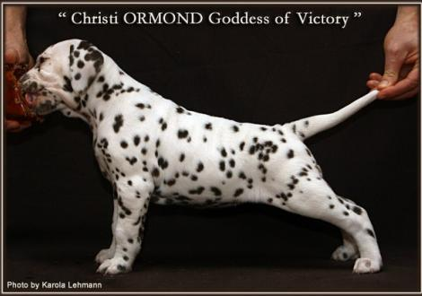 Christi ORMOND Goddess of Victory
