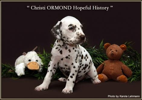 Christi ORMOND Hopeful History