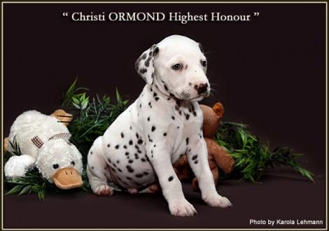 Christi ORMOND Highest Honour