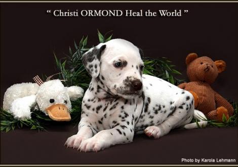 Christi ORMOND Heal the World