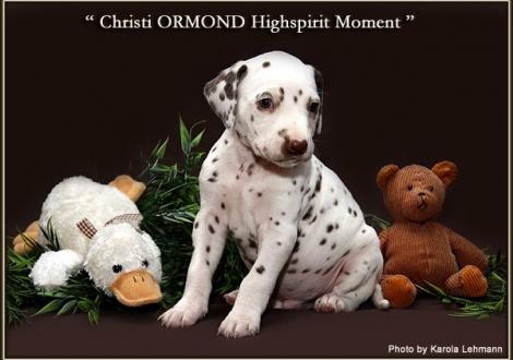 Christi ORMOND Highspirit Moment