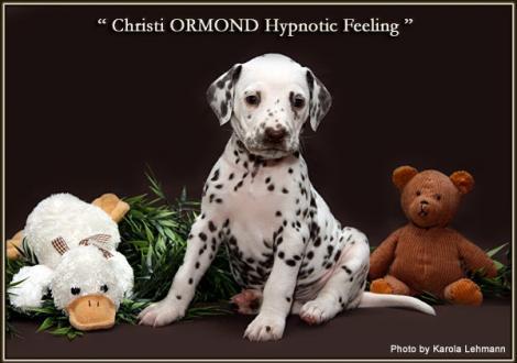 Christi ORMOND Hypnotic Feeling
