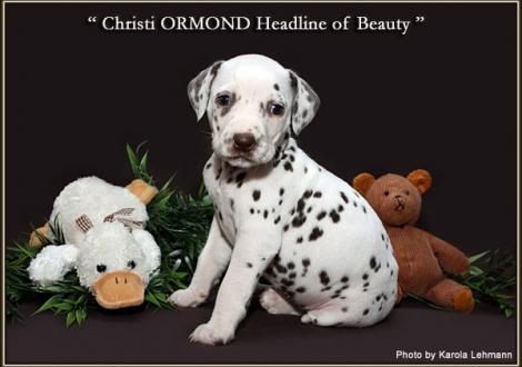 Christi ORMOND Headline of Beauty