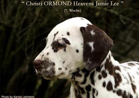 Christi ORMOND Heavens Jamie Lee