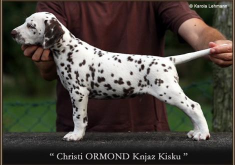 Christi ORMOND Knjaz Kisku