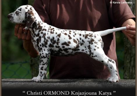Christi ORMOND Knjazjouna Katya