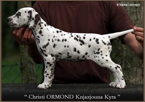 Christi ORMOND Knjazjouna Kyra
