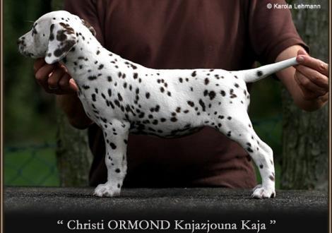 Christi ORMOND Knjazjouna Kaja