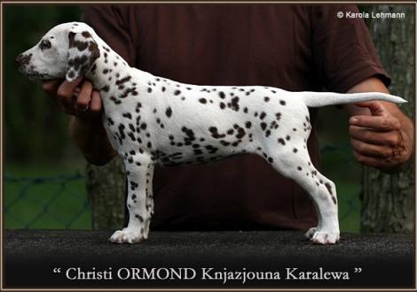 Christi ORMOND Knjazjouna Karalewa