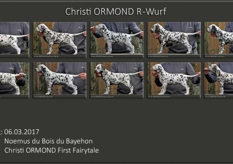 Standfotos Christi ORMOND R - Wurf