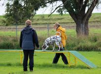 Fotoimpressionen vom 5. Dog Training Seminar