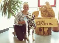 Internationale Rassehunde Ausstellung in Wieselburg - Österreich