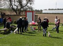 Presentation of different exhibition leashes and accessories