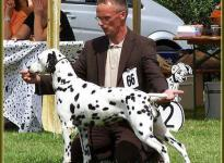Presentation of female Jameela vom Teutoburger Wald Regional Show Leopoldstal 2007 - Champion Class