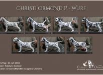 Standfotos Christi ORMOND P - Wurf