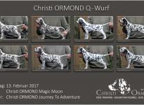 Standfotos Christi ORMOND Q - Wurf