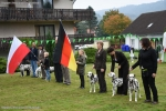 Video Impressions Dog Show Wolfshagen