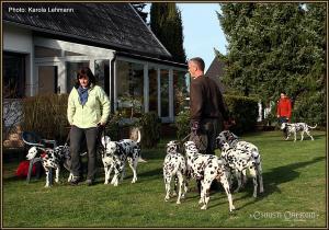 Dog Training Seminar: Begegnung von zwei verschiedenen Rudeln