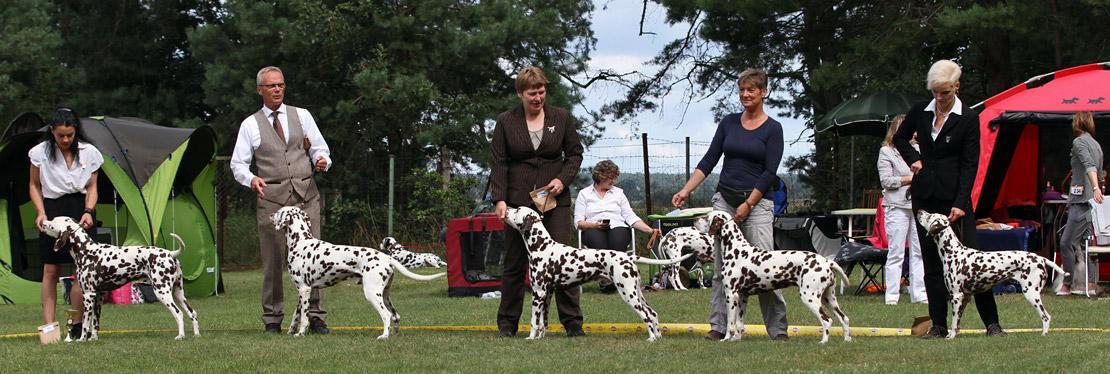 Dog Handling Presentations 2017