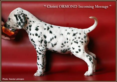 Christi ORMOND Incoming Message