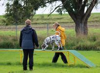 Fotoimpressionen vom 5. Dog Training Seminar