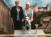 International Dog Show in Salzburg - Austria