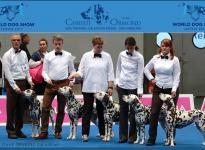 Breeding Group Christi ORMOND - WORLD DOG SHOW 2017 in Leizpig - Germany