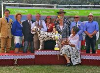 Presentation of the male Christi ORMOND Exquisite Selection