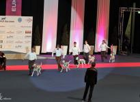 Presentation of Christi ORMOND Breeding Group on the World Dog Show in Leipzig | Germany
