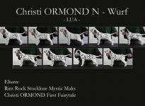 Standfotos Christi ORMOND N - Wurf