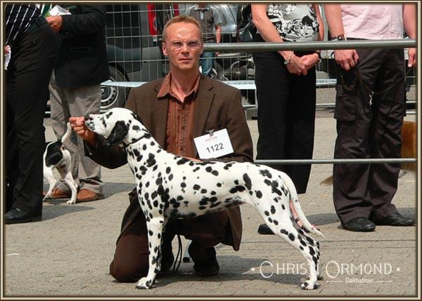 b2a12c1625db63 5. National Dog Show in Cloppenburg - Germany
